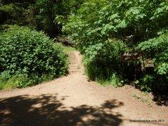 to stevenson memorial trail