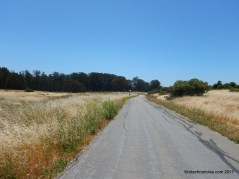 pinole point trail