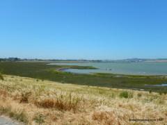 dotson family marsh