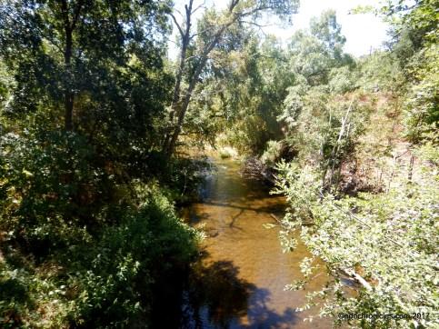 wooden valley creek