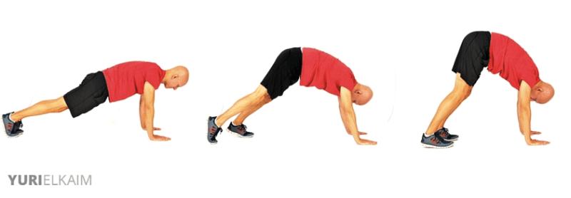 Dynamic Warm-up Exercises - Inchworm