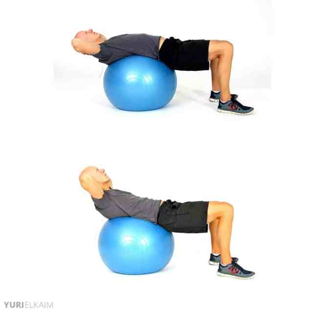 Push-Ups on a Ball - Ball Crunches