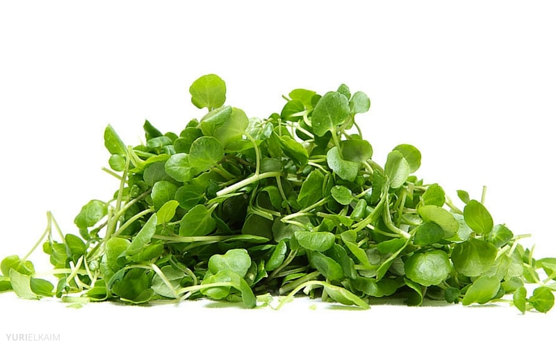 7 Anti-Aging Foods Everyone Over 40 Should Eat - Watercress