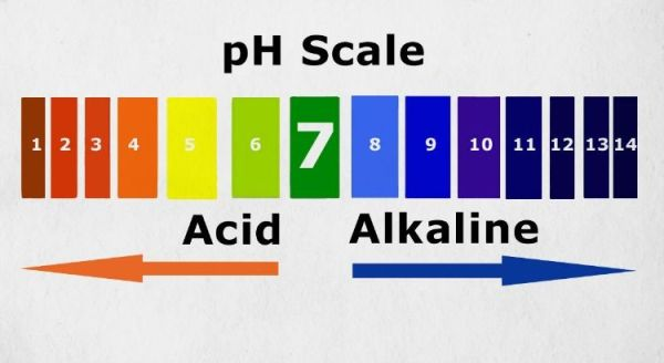 This is the pH Scale