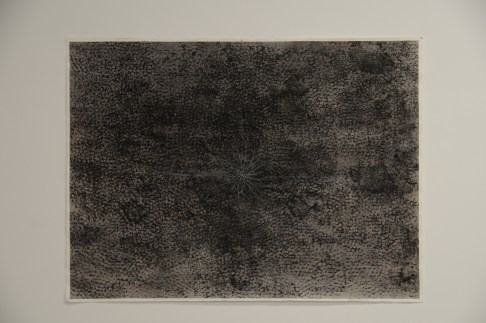 """Root 22"""" x 30"""" Ink on paper 2010"""
