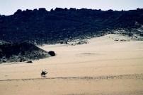 Yuri Martins Fontes / Egito-2007 / Luxor: Peregrinos / Margem ocidental do Nilo - deserto do Saara