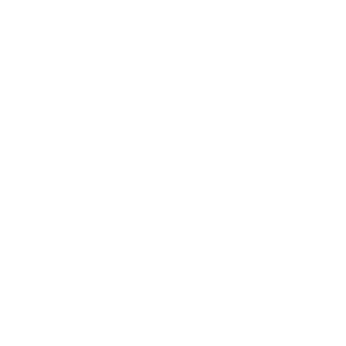 logo_irs-weiss_square
