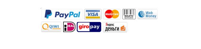 Banggod payment