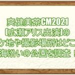 爽健美茶CM2021(広瀬アリス出演)のロケ地や撮影場所はどこ?海沿いの公園を調査!2