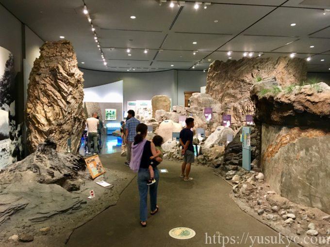 琵琶湖博物館A展示室