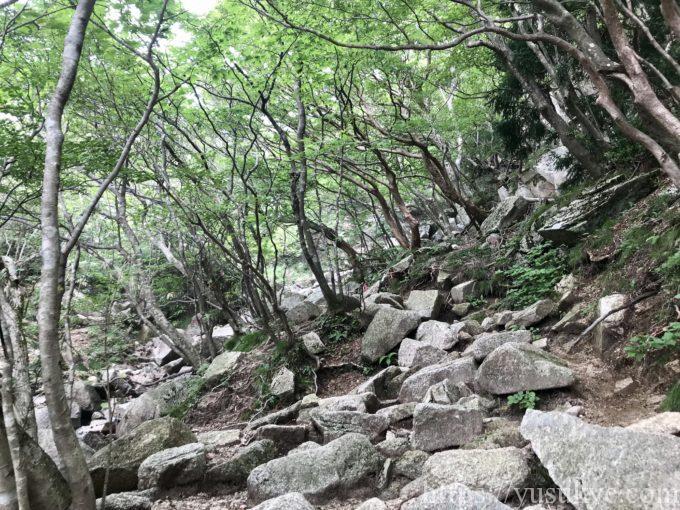 御在所岳裏道登山道