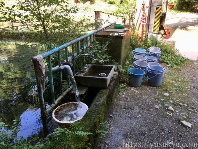 鱒の家の釣り堀