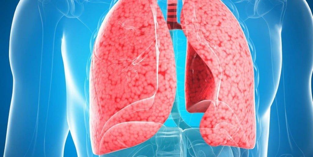 Inflammation av lungorna: symptom och behandling