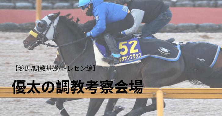 【競馬/調教基礎①/トレセン編】