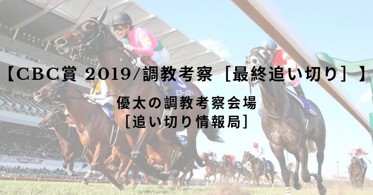 【CBC賞 2019/調教考察[最終追い切り]】