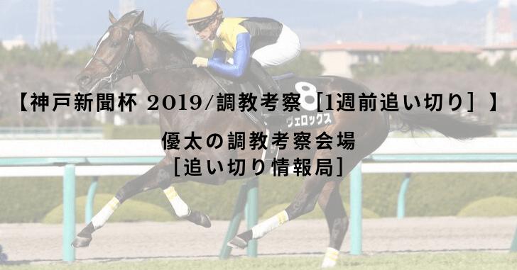 【神戸新聞杯 2019/調教考察[1週前追い切り]】
