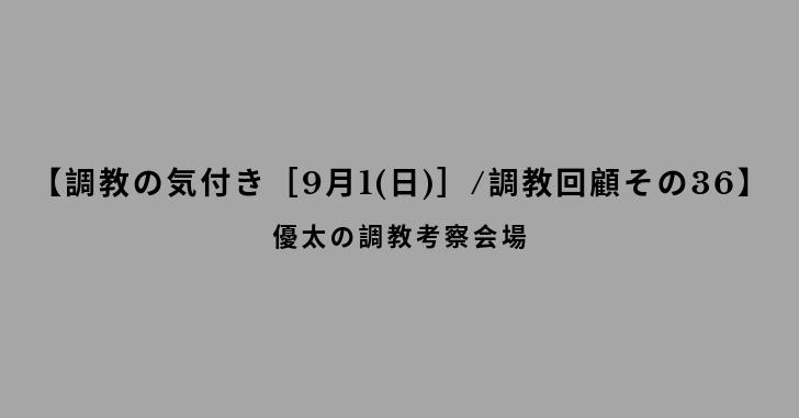 【調教の気付き[9月1(日)]/調教回顧その36】