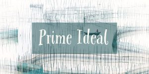 Prime Ideal Problems and Solution in Ring Theory in Mathematics