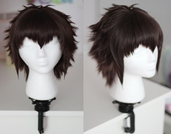 Raichi Todoroki wig