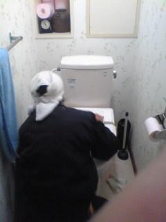 完成トイレタンク交換