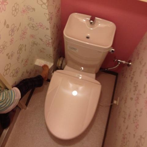 花柄ピンクのトイレパック