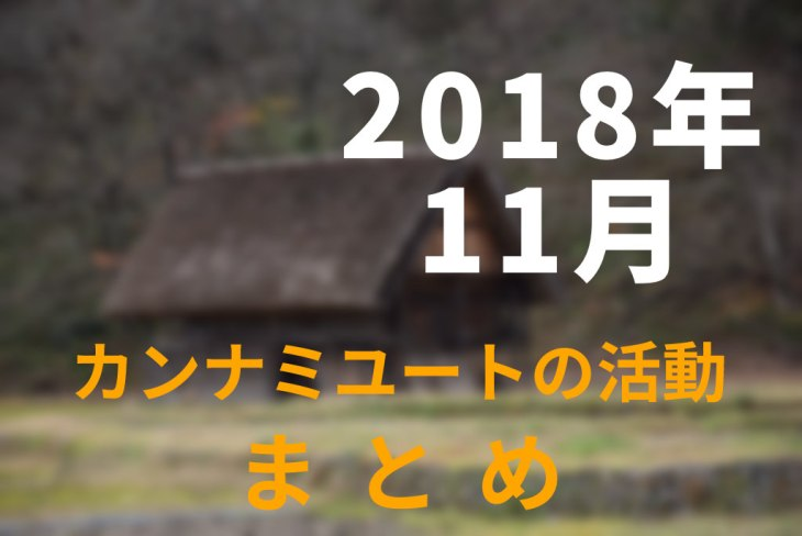 2018年11月カンナミユートの活動まとめ