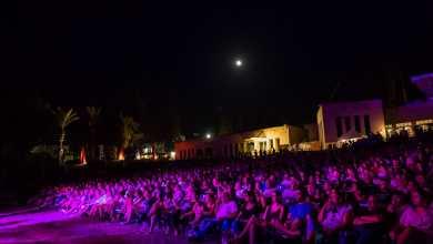 Photo of פסטיבל כנרת Vibes בבית גבריאל