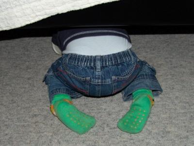 Unter dem Bett festgewuzzelt