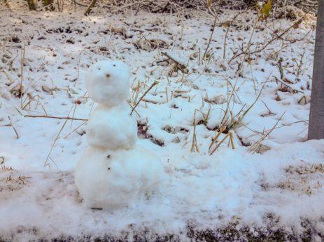 Il nostro pupazzo di neve