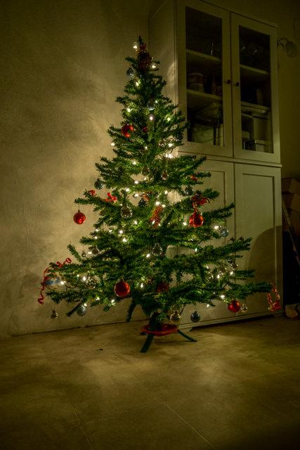 Il nostro albero di Natale 2015