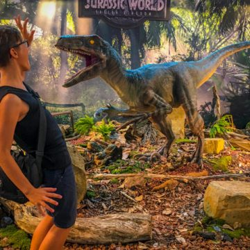 Wow! I didn't expect to meet a Velociraptor here!
