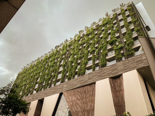 Nice idea, the vertical gardens!