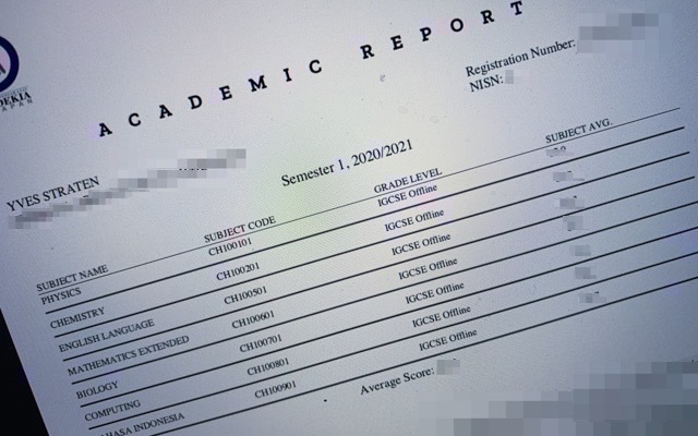 I am happy about my report card
