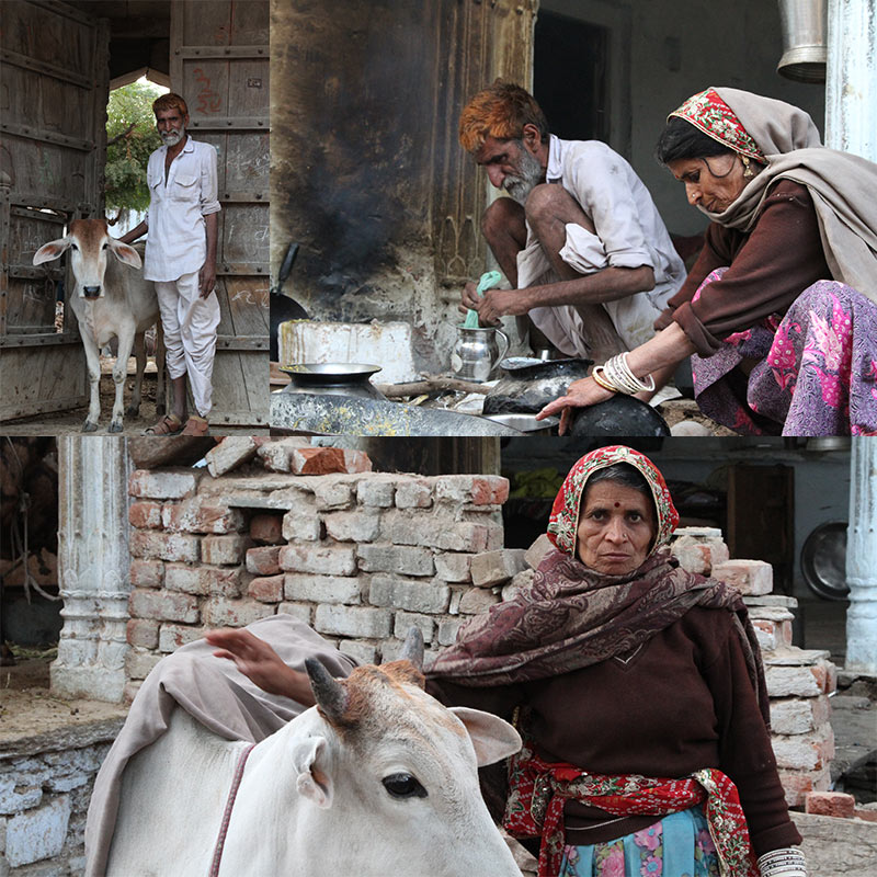 boerderij in dorp of stad in India