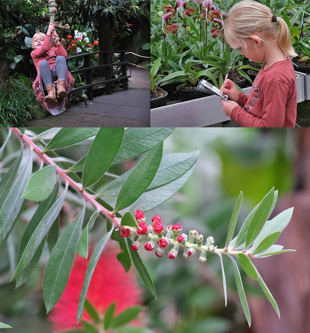 Orchideeënhoeve met kinderen