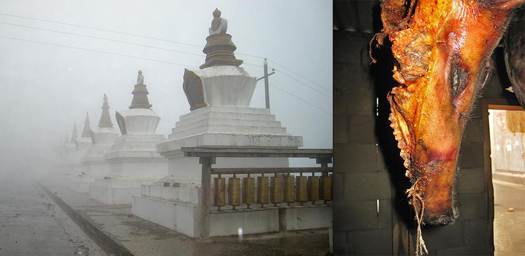 Dichte mist en een varken tussen Deqin en Zhongdian