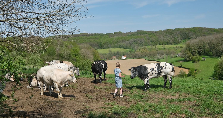 doen in Zuid-Limburg met kinderen