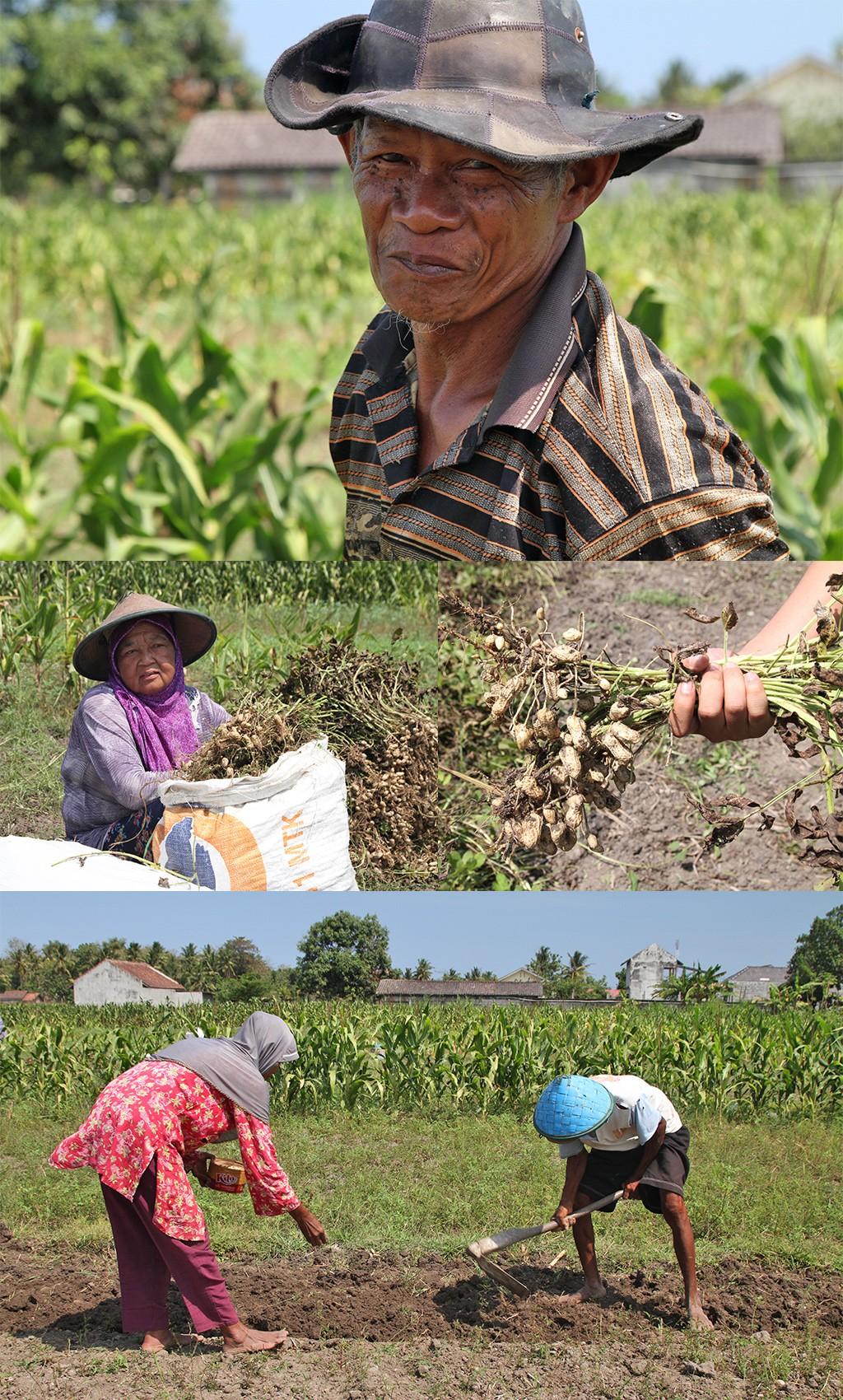 photo stories - pindaboertjes Yogyakarta