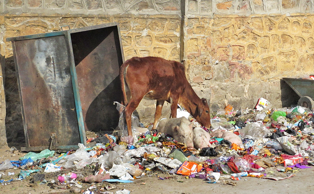 Plastic is er in India genoeg