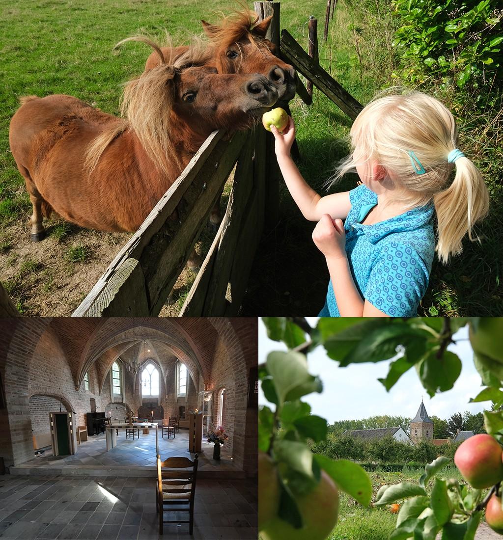 pony's en kerkje Ressen
