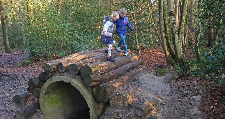 zo willen kinderen wandelen in Drenthe