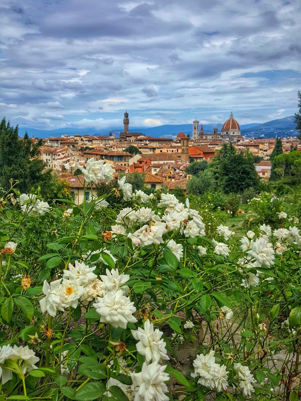 View of Florence Tuscany from Giardino Delle Rosse.