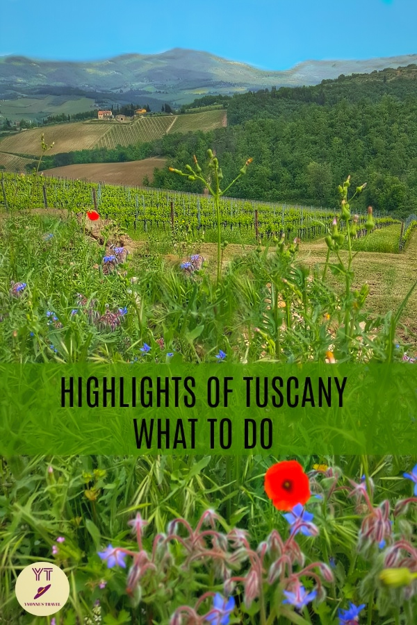 Looking into what do in Tuscany? Learn about highlights of Tuscany : Florence, Pisa, San Gimignano, and dreamy countryside with inviting wineries, #highlightsoftuscany #whattodointuscany