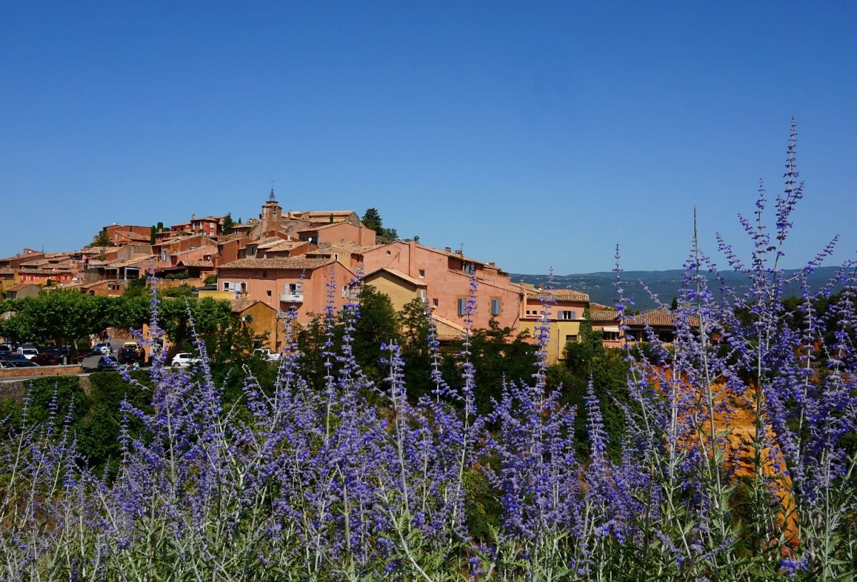 Benefits of travel. Roussillon France behind lavender fields.