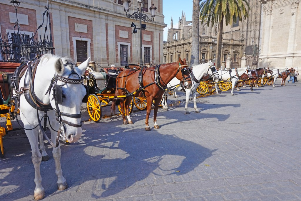 Seville attractions. For a more romantic ride, horse carriages are available.