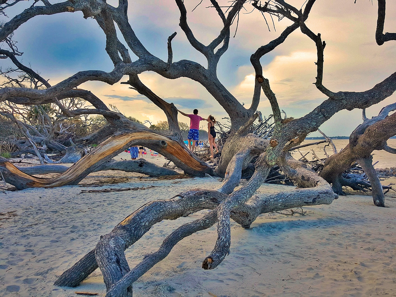 Driftwood Beach on Jekyll Island does not see a lot of people despite being easily accessible.