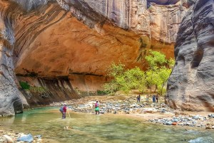 Hiking the Narrows in Zion.