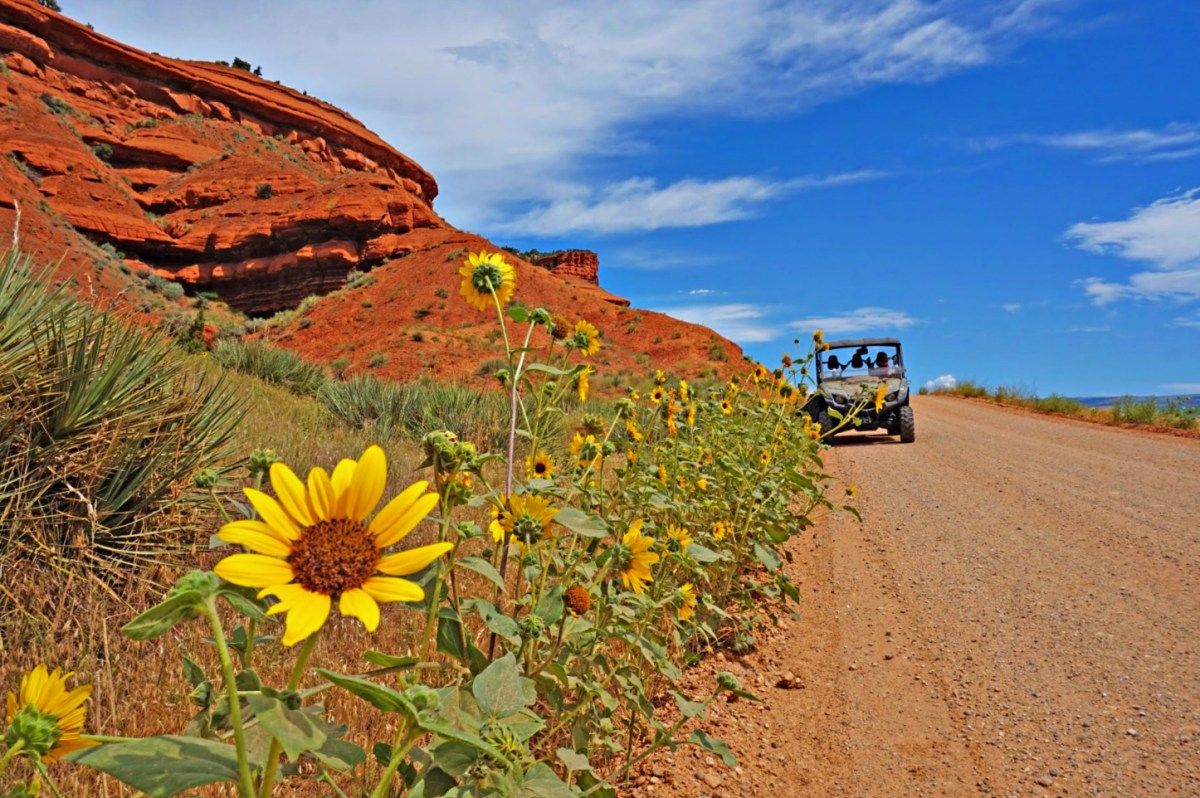 MIles of dirt road and hiking terrain await at Red Reflet Ranch.