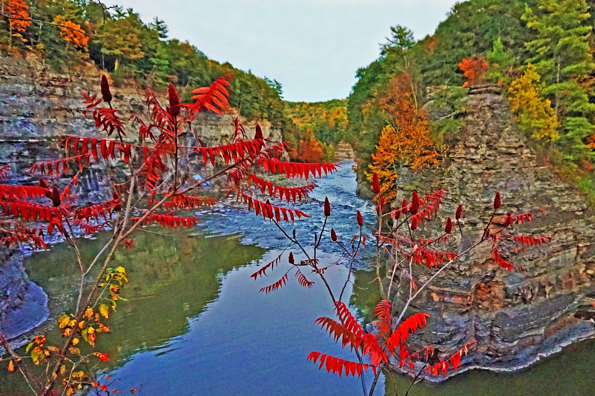 Best state parks in New York. Amazing Letchworth State Park truly shines in the fall.