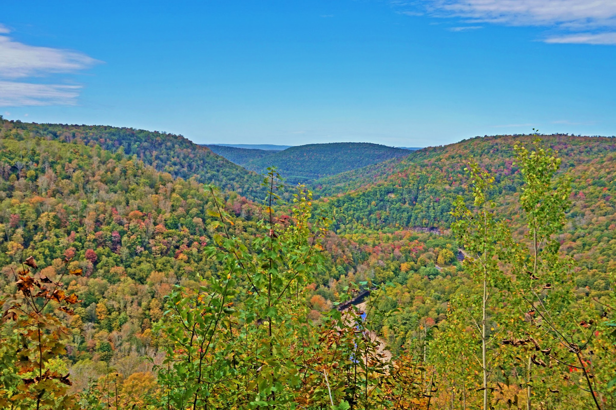 Loyalsock Canyon Vista. Worlds End State Parks presents its full glory during the fall.